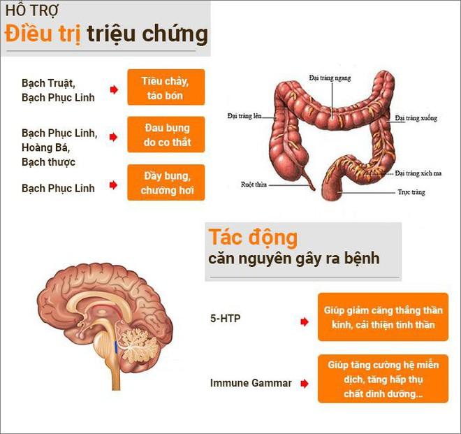 4 sai lầm khi điều trị hội chứng ruột kích thích khiến người mắc mãi không khỏi - Ảnh 4.
