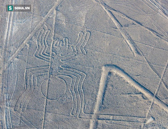 12 bí ẩn kinh điển trong lịch sử đã được khoa học giải mã thành công: Bất ngờ nhất là số 7 - ảnh 1