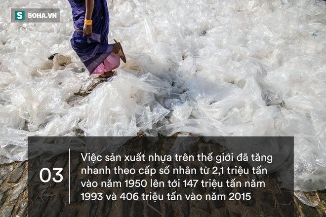 10 sự thật gây sốc về nhựa: Sẽ đến ngày quay lại hại con người! - ảnh 3