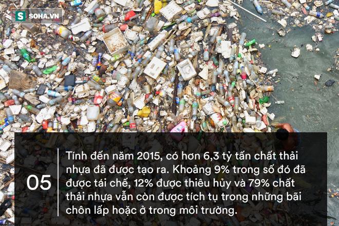 10 sự thật gây sốc về nhựa: Sẽ đến ngày quay lại hại con người! - ảnh 5