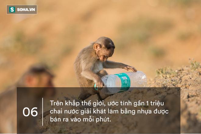 10 sự thật gây sốc về nhựa: Sẽ đến ngày quay lại hại con người! - ảnh 6