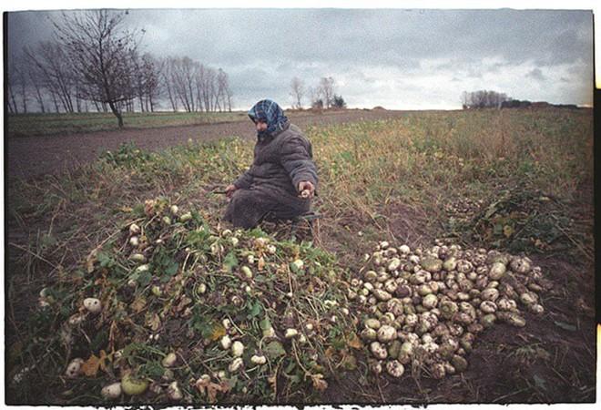 Những bức ảnh hơn vạn lời nói cho thấy mức độ khủng khiếp của thảm họa hạt nhân Chernobyl: Vùng đất chết chóc bao giờ mới hồi sinh? - Ảnh 18.
