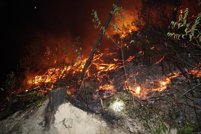 Hơn 500 người trắng đêm vừa sơ tán tài sản cho dân vừa dập lửa cứu rừng - Ảnh 5.