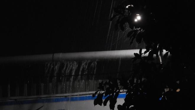 """Cơn mưa vàng"""" cứu những cánh rừng tại Hà Tĩnh - Ảnh 3."""