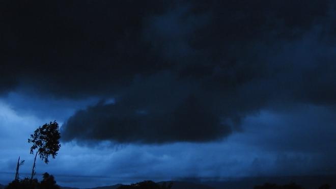 """Cơn mưa vàng"""" cứu những cánh rừng tại Hà Tĩnh - Ảnh 2."""