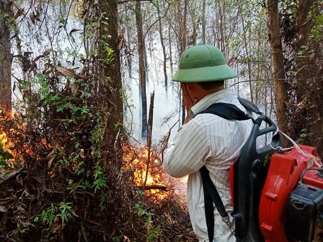 Toàn cảnh vụ cháy rừng thông trong đêm, lực lượng chức năng trắng đêm canh rừng - Ảnh 3.