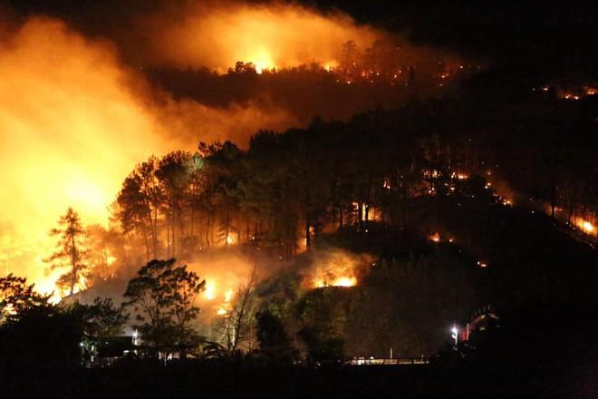 Toàn cảnh vụ cháy rừng thông trong đêm, lực lượng chức năng trắng đêm canh rừng - Ảnh 4.
