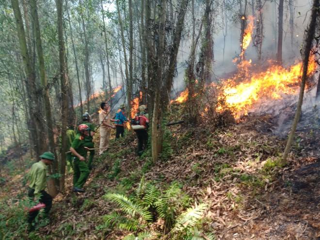 Toàn cảnh vụ cháy rừng thông trong đêm, lực lượng chức năng trắng đêm canh rừng - Ảnh 2.