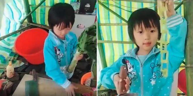 Vua Đầu bếp họ Lưu, dù bé như hạt vừng nhưng tài nghệ nấu nướng chẳng thua gì đầu bếp chuyên nghiệp