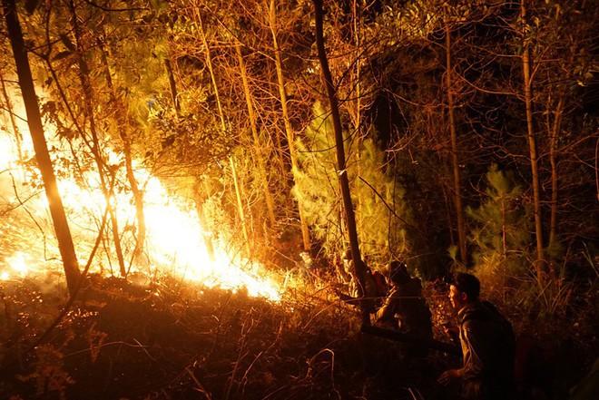 Toàn cảnh vụ cháy rừng thông trong đêm, lực lượng chức năng trắng đêm canh rừng - Ảnh 7.