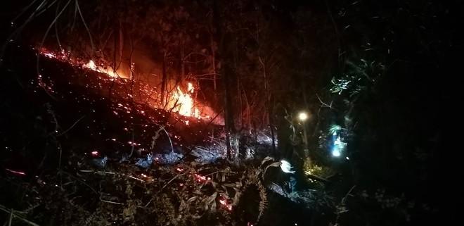 Toàn cảnh vụ cháy rừng thông trong đêm, lực lượng chức năng trắng đêm canh rừng - Ảnh 11.