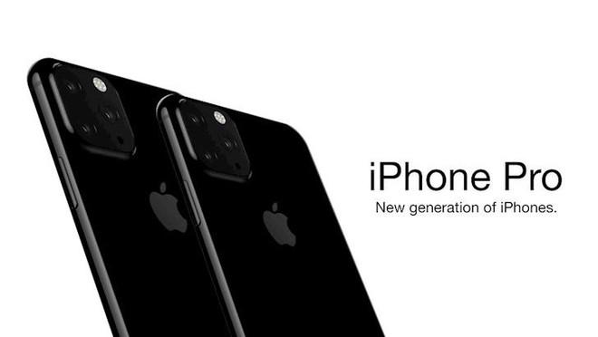 2019 có thể là năm của iPhone Pro? - Ảnh 1.