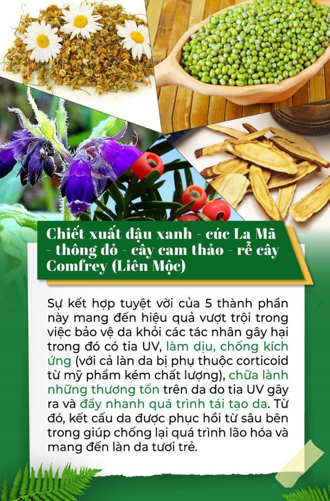 8 dưỡng chất từ thiên nhiên mang lại hiệu quả giảm nám không ngờ - Ảnh 2.