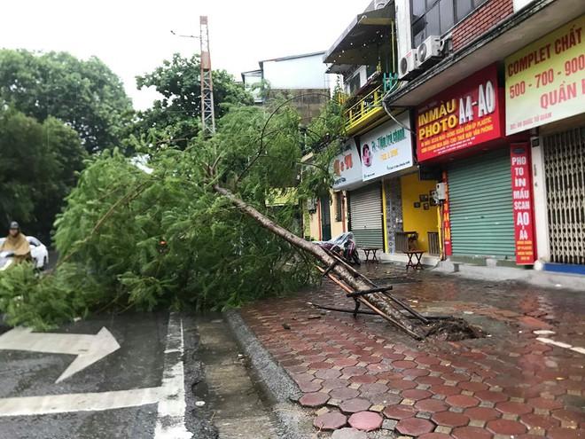Ảnh hưởng của bão số 3, Hà Nội ngập nhiều tuyến phố, cây xanh gãy cành, bật gốc - Ảnh 3.