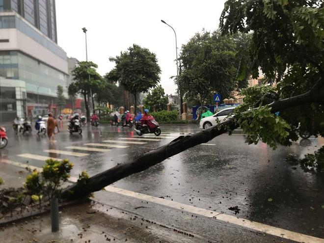 Ảnh hưởng của bão số 3, Hà Nội ngập nhiều tuyến phố, cây xanh gãy cành, bật gốc - Ảnh 5.