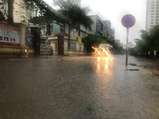 Ảnh hưởng của bão số 3, Hà Nội ngập nhiều tuyến phố, cây xanh gãy cành, bật gốc - Ảnh 8.