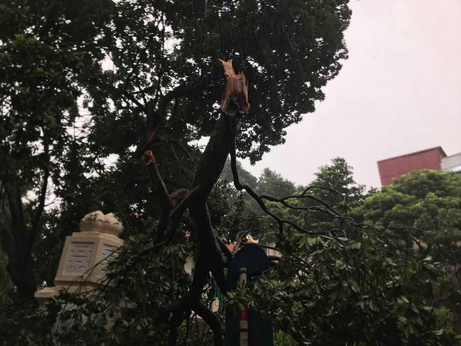 Ảnh hưởng của bão số 3, Hà Nội ngập nhiều tuyến phố, cây xanh gãy cành, bật gốc - Ảnh 9.