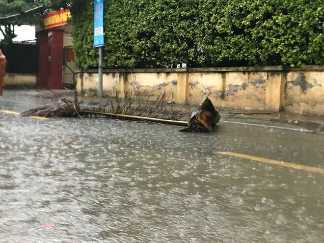 Ảnh hưởng của bão số 3, Hà Nội ngập nhiều tuyến phố, cây xanh gãy cành, bật gốc - Ảnh 10.