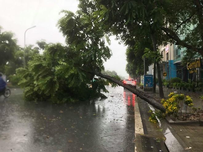 Ảnh hưởng của bão số 3, Hà Nội ngập nhiều tuyến phố, cây xanh gãy cành, bật gốc - Ảnh 2.