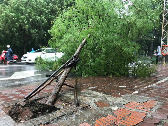 Ảnh hưởng của bão số 3, Hà Nội ngập nhiều tuyến phố, cây xanh gãy cành, bật gốc - Ảnh 12.