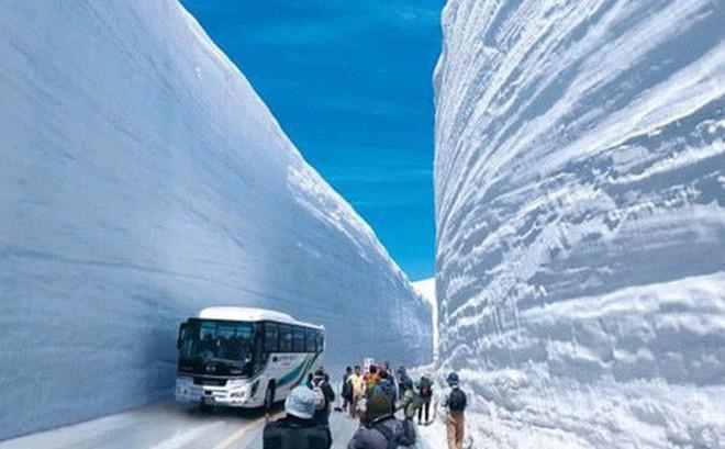 """Tuyết phủ cao tới 17m, thung lũng quanh co ở Nhật được mệnh danh là """"The Wall"""" đời thực"""
