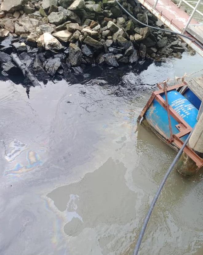 Người dân kinh hãi với vệt dầu đen kịt, đặc quánh ở bờ sông Lam - Ảnh 4.
