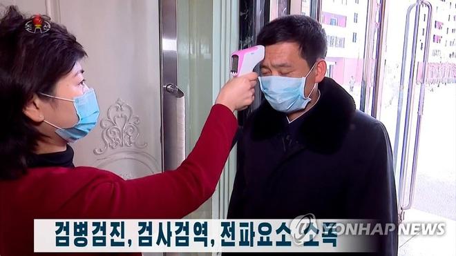 Gần 93.000 người nhiễm COVID-19 trên toàn cầu; Triều Tiên đưa ít nhất 7.000 người vào diện cách ly - Ảnh 4.