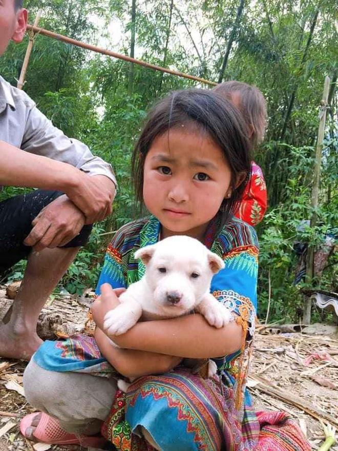 Bị mẹ bắt chó đi bán, cô bé liên tục xin xỏ và hành động khác thường từ vị khách lạ mặt - Ảnh 3.