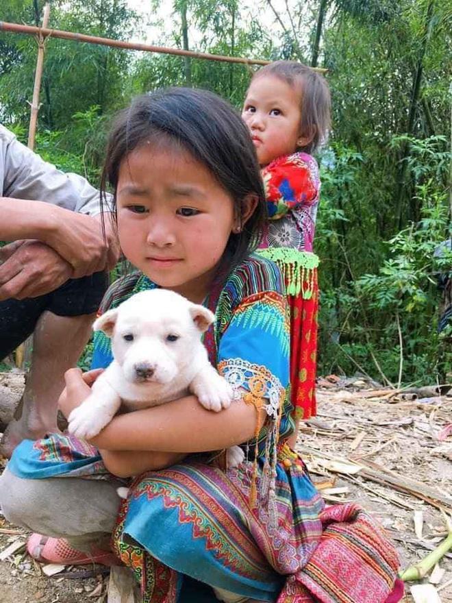Bị mẹ bắt chó đi bán, cô bé liên tục xin xỏ và hành động khác thường từ vị khách lạ mặt - Ảnh 4.