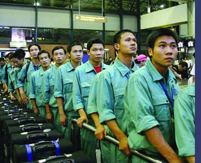 labor export in viet nam Published information on labor conditions in vietnam's export manufacturing industries can generally be classified into four categories of sources as nearly all of these female workers are of childbearing age, it is significant that viet-nam's labor law has mandated relatively generous maternity benefits.