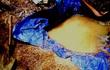 Lão nông trúng đậm trong mỏ vàng khe Rùi Rúi