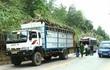 Xe khách đâm đuôi xe tải, 11 người bị thương