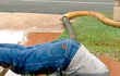 Bức ảnh người đàn ông vục mặt trong bùn sửa đường ống nước gây bão mạng xã hội