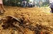 Phát hiện 200 tấn bùn thải trong KCN Formosa Đồng Nai