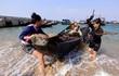 Ứng 3.000 tỷ bồi thường cho ngư dân 4 tỉnh miền Trung