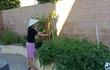 Thanh Thảo làm nông dân, chăm sóc vườn rau xanh mướt trên đất Mỹ