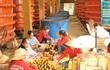 Phú Quốc, sau 'bão' Arsen