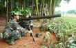Quân đoàn 1: Chú trọng nâng cao chất lượng nguồn và huấn luyện quân nhân dự bị