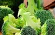 """Không cần """"thuốc xổ"""", 8 thực phẩm này sẽ giúp bạn thải độc cơ thể an toàn hơn nhiều"""