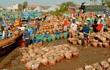 Làng nước mắm 200 năm ở Phan Thiết