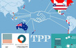 Có TPP hay không doanh nghiệp Việt vẫn phát triển