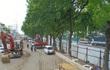 Hà Nội: Bắt đầu chặt hạ, di dời 1.300 cây xanh