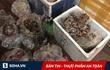 Mỡ bẩn tìm đường vào Hà Nội, chim thối xuất hiện ở Hà Tĩnh, 1 gia đình nguy kịch vì nấm độc