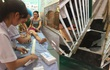 Bé trai 6 tuổi lọt qua sàn tầng 1 rơi xuống hầm gửi xe ở chợ Cốc Lếu