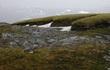 Tin không vui: Hiểm họa khó lường khiến Nam Cực dần trở lại 3 triệu năm trước!