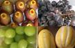 Ăn chảnh hàng ngoại: Tranh mua táo héo, nho rụng, dưa sứt vỏ