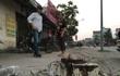 Hà Nội: Thêm một xã đốn hạ cây xanh để dọn dẹp vỉa hè