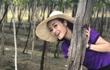 MC Phí Thùy Linh chụp ảnh nhí nhảnh ở vườn nho