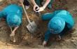 Bình Định: Phát hiện 50 quả bom bi khi đào móng xây trụ sở