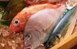 Ai mổ cá cũng bỏ đi 5 bộ phận này, chuyên gia nói: Đó là phần có giá trị, bỏ đi thật phí!